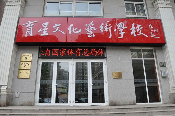 北京市东城区育星文化艺术培训学校